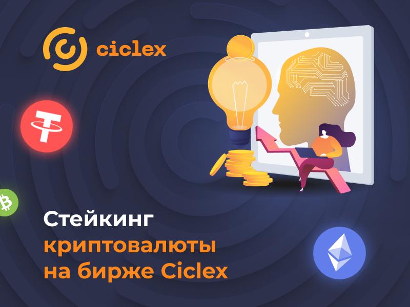 Ciclex отзывы